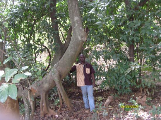A Kampti à la source de mon village (le Gnosiène)
